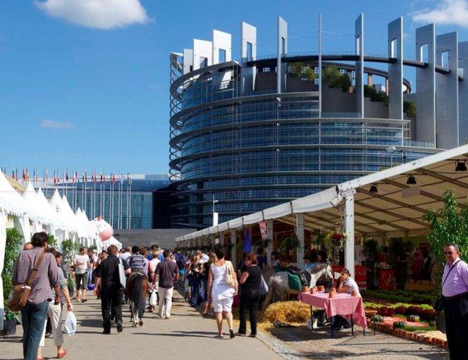 Foire européenne 2013