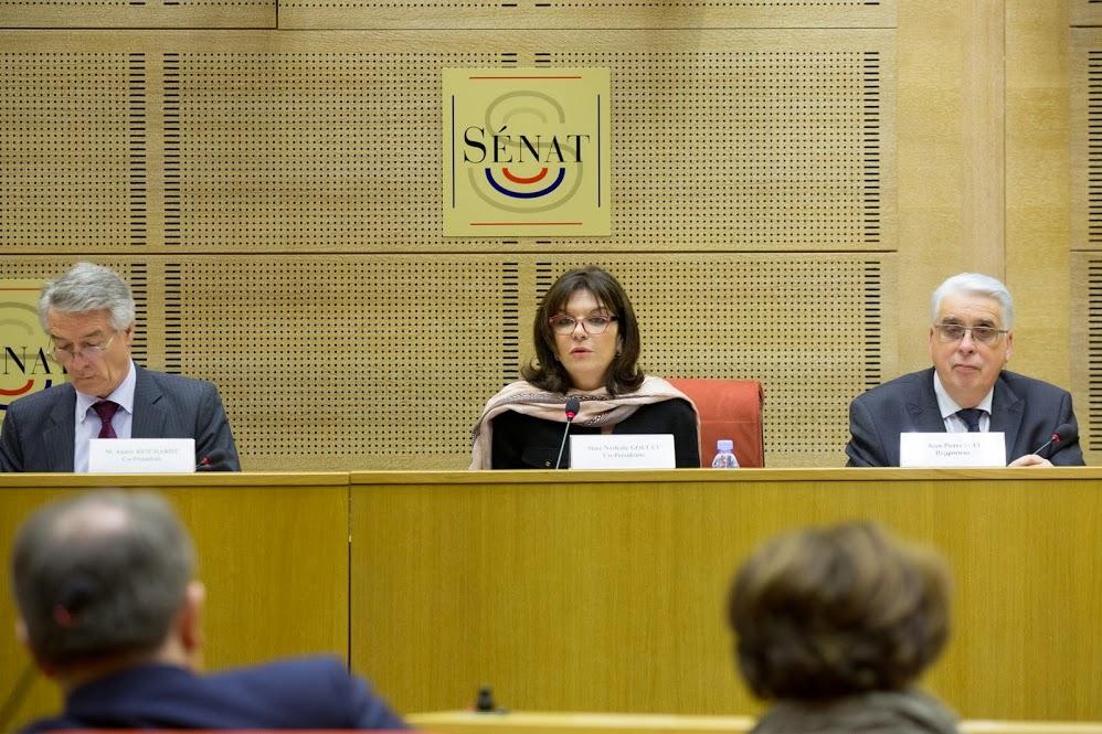 Commission enquête lutte contre reseaux djihadistes (12)